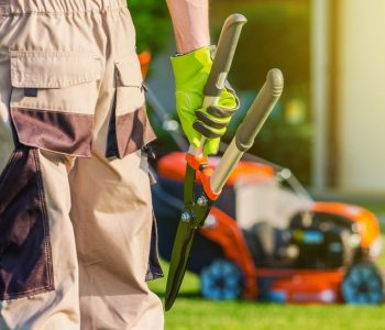 New Year, New Landscaping Projects: 4 Ways to Plan Ahead